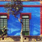 Frida Kahlo museo virtual