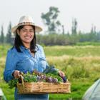 canasta por mexico cuarentena verduras frutas apoyo ayuda